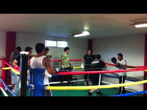 Box Minos Gym Durango Dgo