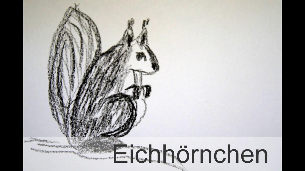 Eichhörnchen Zeichnen Lernen How To Draw A Squirrel Animals