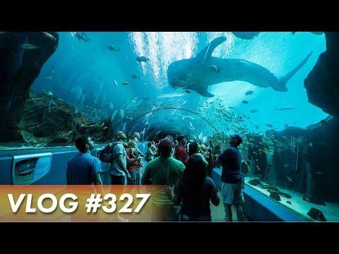 THE MOST AMAZING AQUARIUM - Georgia Aquarium