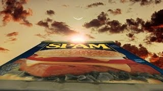 The History of SPAM