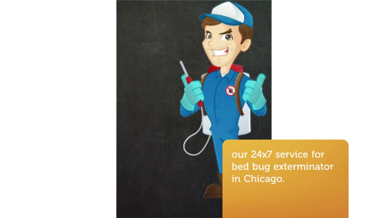 OCP Bed Bug Exterminator in Chicago IL