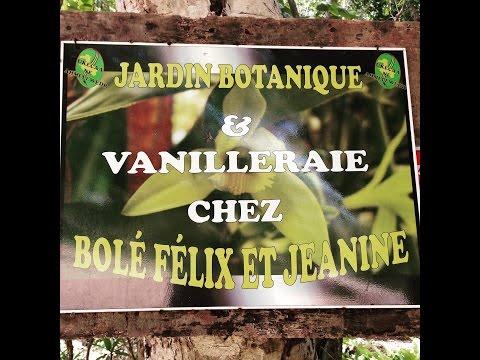 Vanilla Weddings in the South Pacific - Growing Organic Vanilla