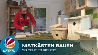 Nistkästen Für Vögel: NABU Niedersachsen Verrät, Worauf Es Beim Bau Und Der Montage Ankommt