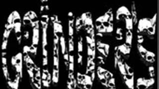 GRINDERS CATAMARAN SKATE FOR FUN! (DEMO SONG).