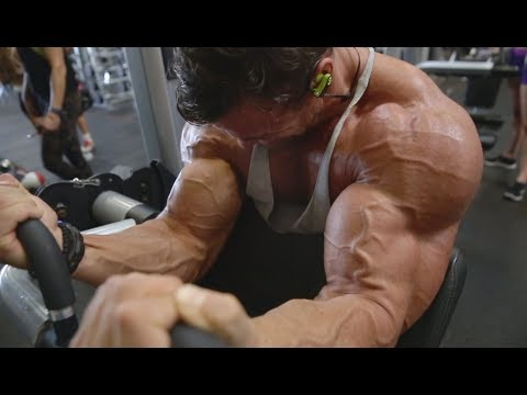 WORLD RECORD DUMBBELL ROW | BACK AND BICEPS