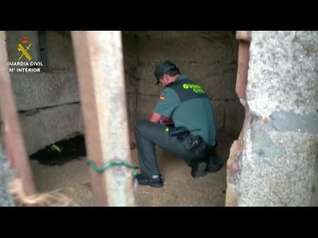 Investigan a un veciño de Tui en cuxa casa acharon o cadáver dun can
