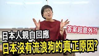 日本人回應日本路上沒有流浪狗的真正原因? 結果答案超意外?!【第一次訪問日本人】|日本留學#24