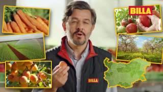 BILLA градини - свежи плодове и зеленчуци в твоя дом - салата Айсберг