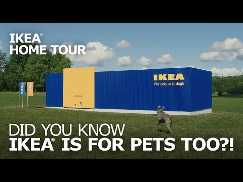 Pet Furniture: LURVIG Cat Beds and Small-Dog Beds – IKEA Home Tour