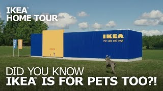 Pet Furniture: LURVIG Cat Beds and Small-Dog Beds - IKEA Home Tour