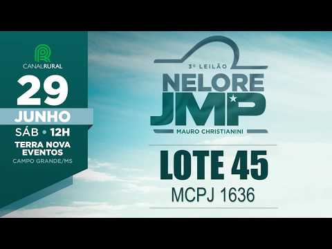 LOTE 45