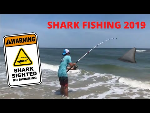 SHARK Fishing PART ONE! Shark Fishing From The Shore In Maryland! Assateague Island Sharks!!