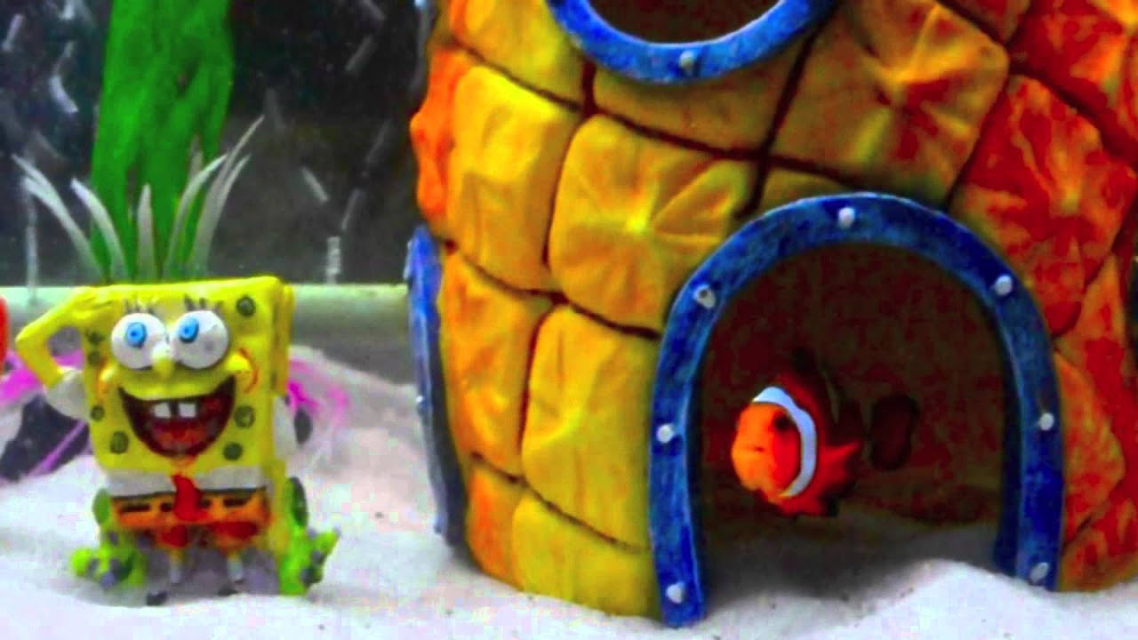 My first saltwater tank by jimmy yang spongebob theme for Spongebob fish tank