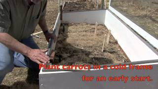 Growing Sweeet and Crunchy Carrots.mov