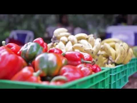 ORGANIC FARMERS MARKET, PURDY ARMS- NAIROBI