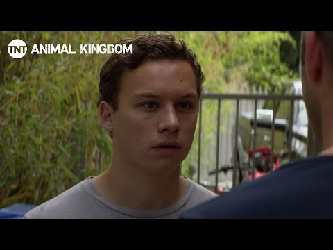 Thumbnail: Animal Kingdom: Meet The Family [RECAP] | TNT
