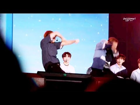 Bae Jinyoung ft. Kang Daniel (Wanna One) Dance 'PSY - New Face' Complication @Fanmeet