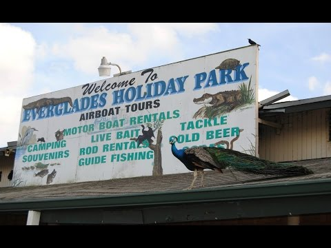 Everglades Holiday Park: An Introduction to Florida's Everglades