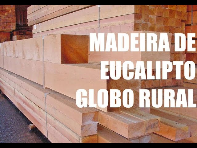 Madeira de Eucalipto - Globo Rural Dez/2002