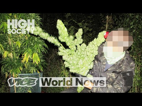 Inside a Secret Weed Farm Hidden in Plain Sight | High Society