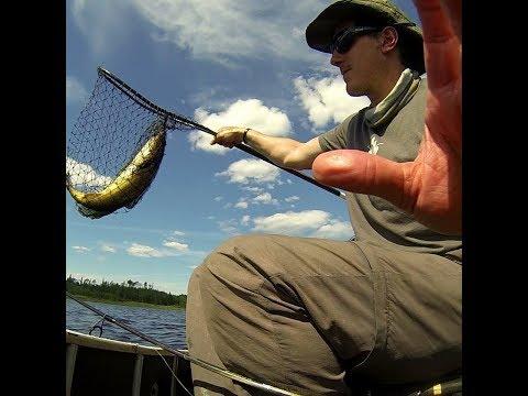 Walleye Fishing On Lake Wenebegon