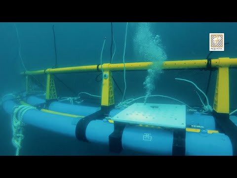 Offshore Submersible Cage - Aquaculture Technology Innovatio