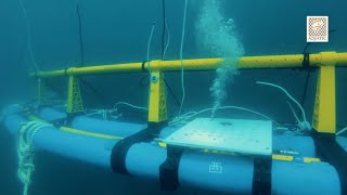 Offshore Submersible Cage - Aquaculture Technology Innovation by Aquatec (2018)