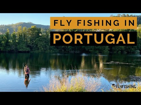 Fly Fishing In Portugal For Brown & Rainbow Trout