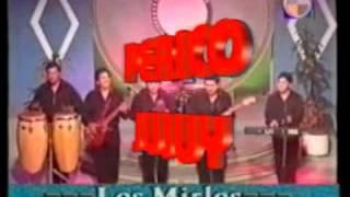 La danza de los Mirlos - Los Mirlos del Perú