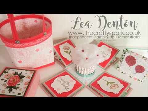 Cupcake Exploding Box Card Hallett Gift Bag