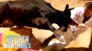 Gordon Pushes Chef Into a Bull Fight! | Kitchen Nightmares