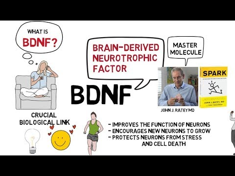 BDNF - Miracle-Gro for the Brain - Thought Medicine