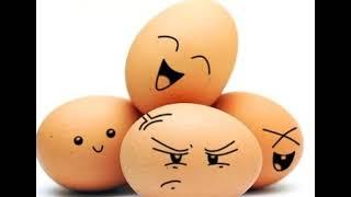 Яйца при похудении