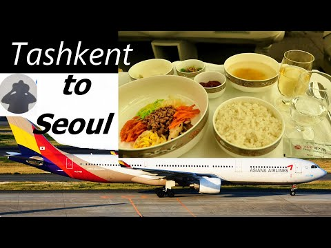 Asiana Airlines Business Class | Tashkent to Seoul TRIP REPORT