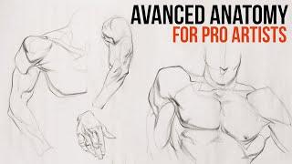 Stan Prokopenko: Advanced Anatomy for Pros (LIVESTREAM)