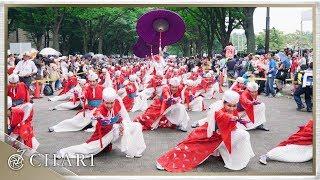【4K】天空しなと屋 しん|空風 SORAKAJI(原宿表参道元氣祭スーパーよさこい2017 NHKストリート)
