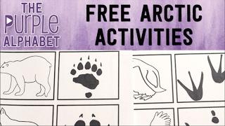 FREE Arctic Printable ACTIVITIES