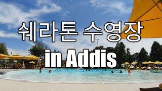 쉐라톤 수영장 정보