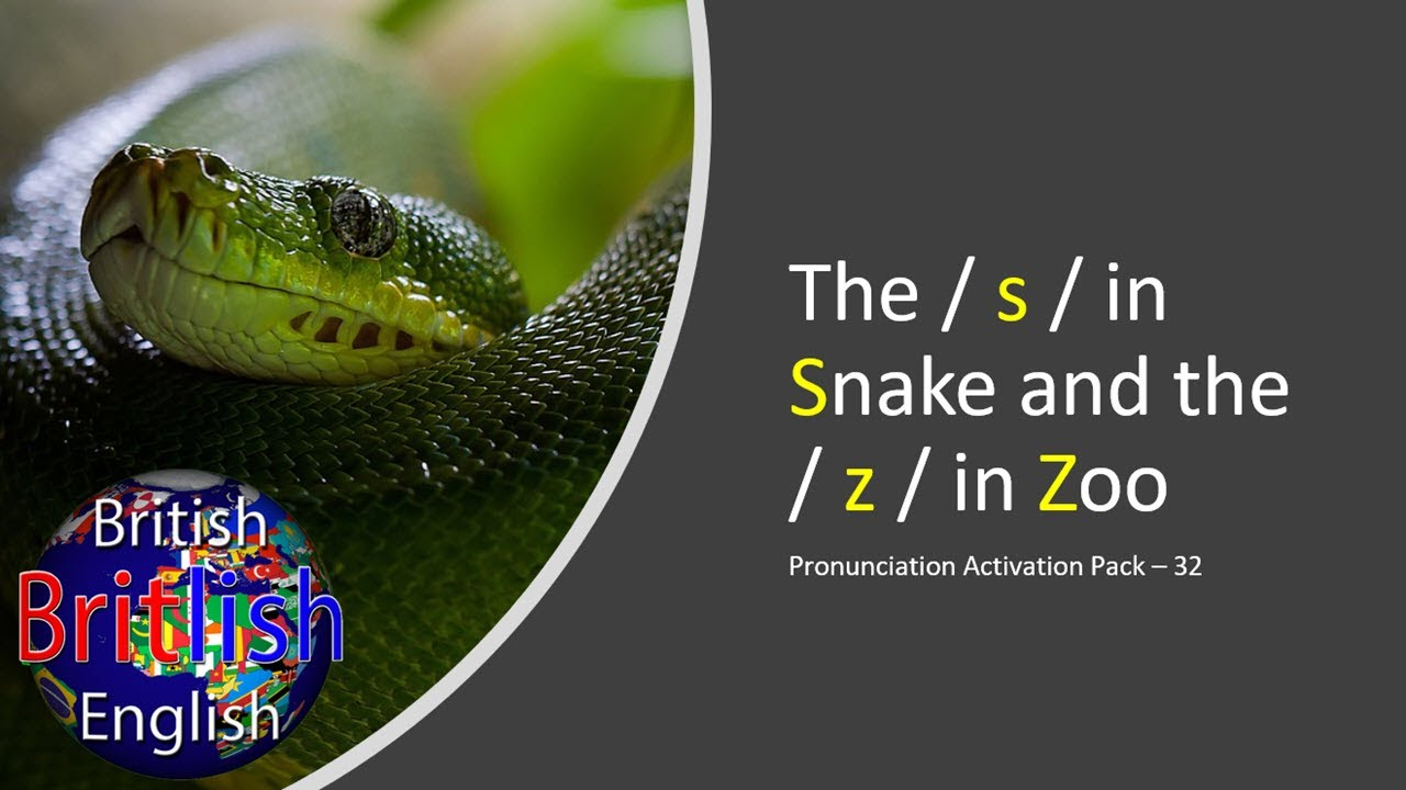 Improve Your British English Pronunciation - The / s / in Snake and the / z / in Zoo