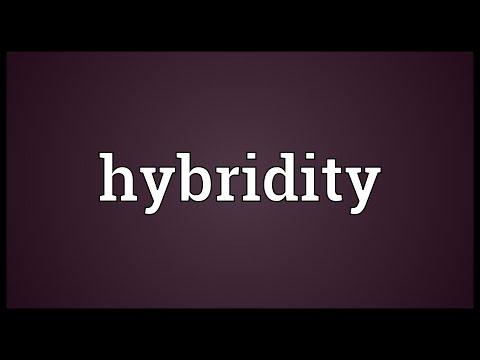 Header of hybridity