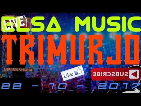 ELSA MUSIC LIVE TRIMURJO (2)