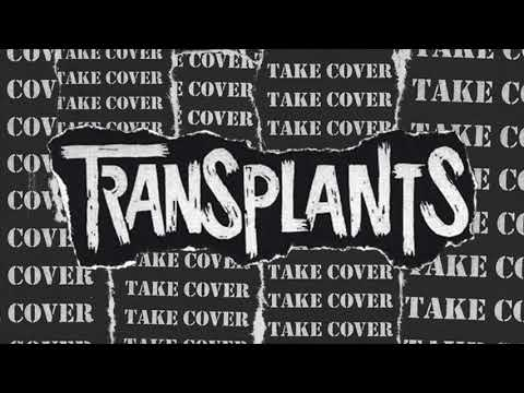 Saturday Night (Transplants)