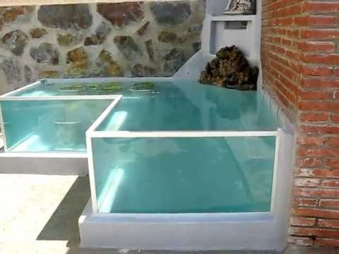Estanque acuario para goldfish litros youtube for Peces para limpiar estanques