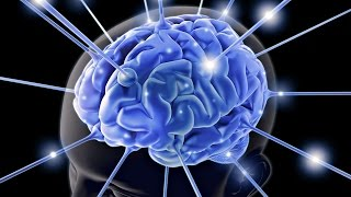 Как Улучшить Память и Внимание? Средство для улучшения работы мозга у взрослых и детей: Омега-3 ПНЖК(В любой аптеке сейчас можно купить препараты с Омега 3–выбор поистине огромен! Чем же Омега-3 НСП лучше?..., 2016-04-18T06:56:06.000Z)