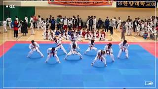 Little Ktigers TV Ep. 5 (2018 Wellness Taekwon Gymnastics Competition (제14회 웰빙태권체조 및 시범페스티벌 K타이거즈))
