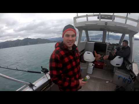 Kaikoura Fishing + Yarns + Cook