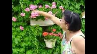 AMOU, village fleuri,Bernadette