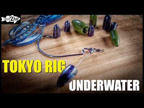 The Tokyo Rig | Bass Bait Underwater View