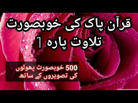 Quran recitation para 1 with 500 natural followers images