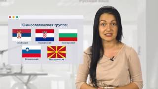Видеопроект 'Лаборатория русского языка'. Выпуск: 'Есть ли у русского языка 'родственники'?'